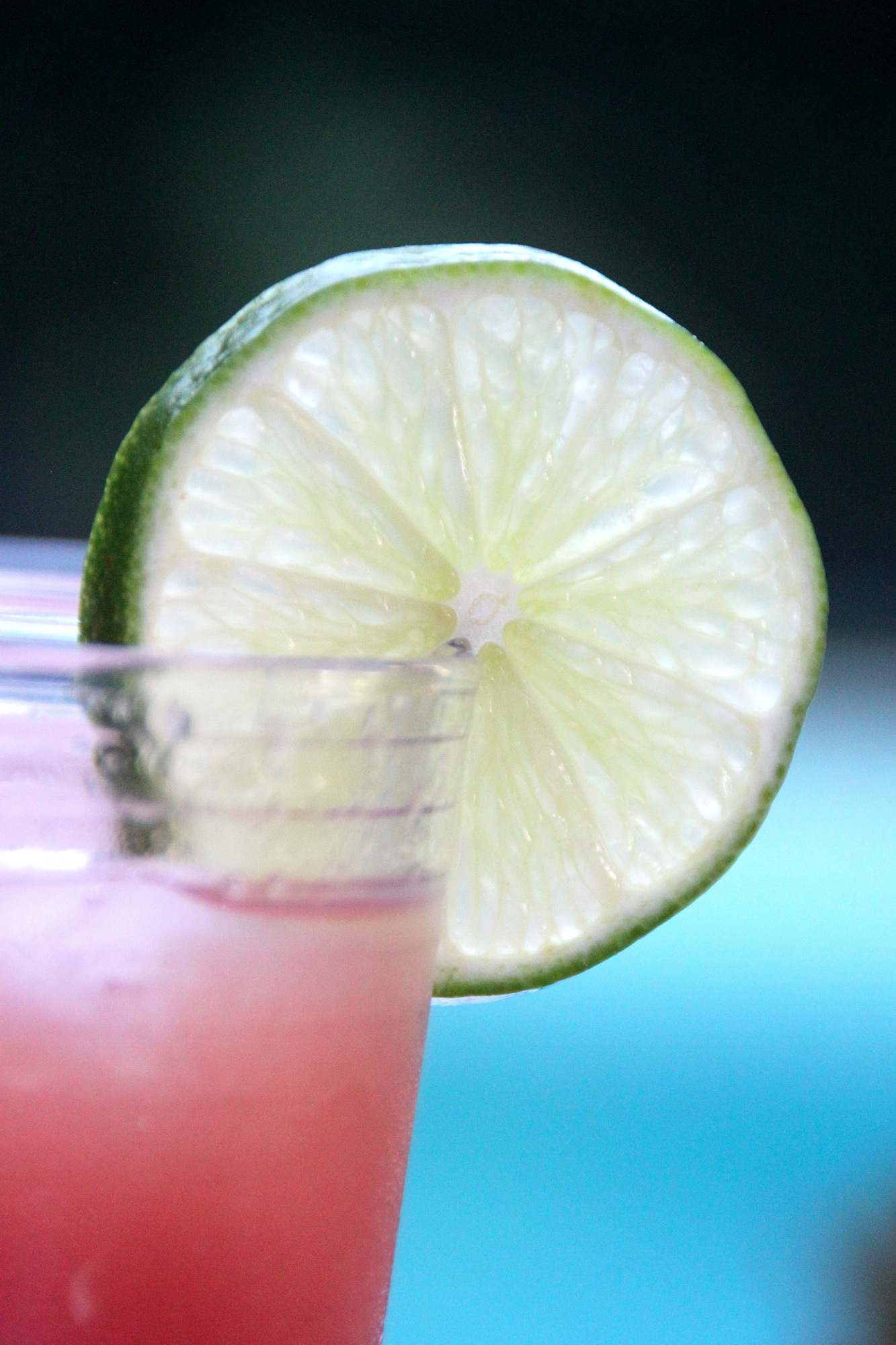 watermelon-limeade-002