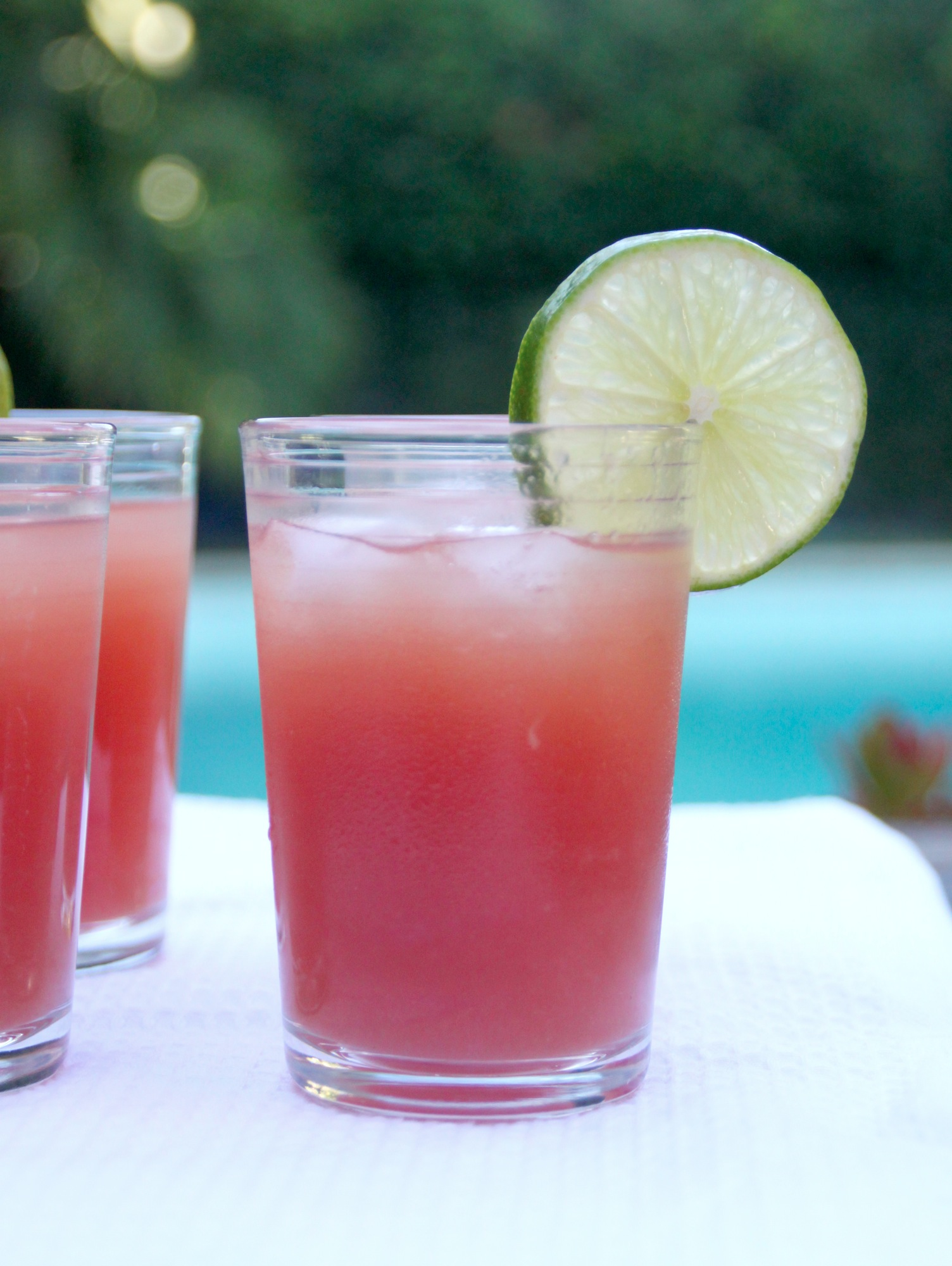 watermelon-limeade-005