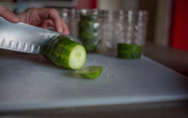refrigerator_pickles_001