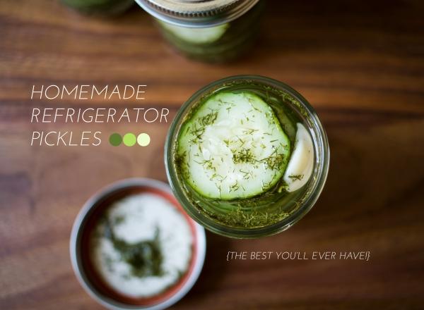 refrigerator_pickles_007