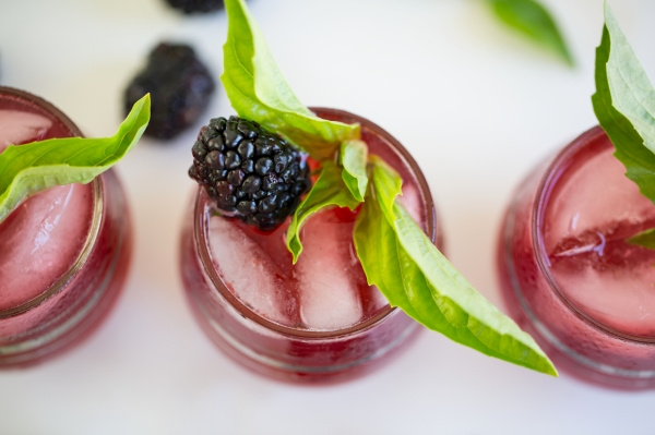 Blackberry_Basil_Ginger_Spritzer_001