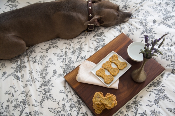 Love_and_Cupcakes_Dog_Treats_007
