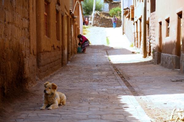 Peru_2013_128