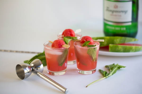 Watermelon_Gin_Punch_002