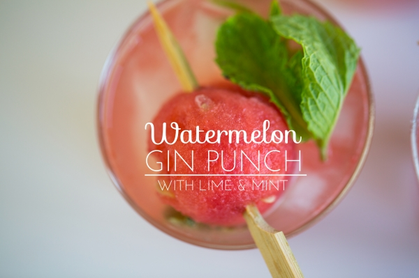 Watermelon_Gin_Punch_009