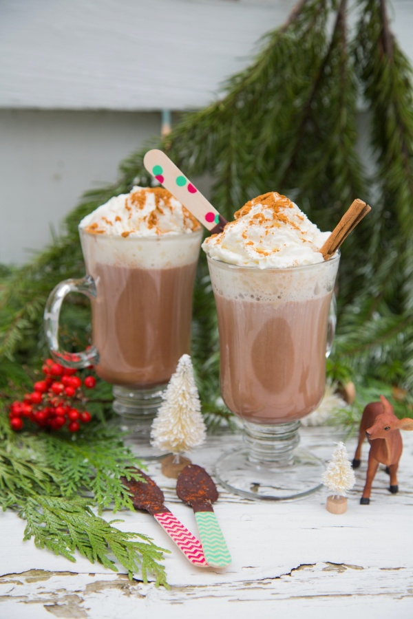 Spicy_Hot_Cocoa_Mix_003